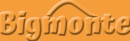Bigmonte - Digital products